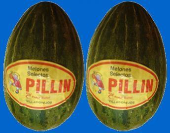 melones_pillin_thumb[7].jpg